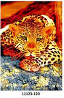 Ковёр цветной с рисунком Леопард разные , фото 1