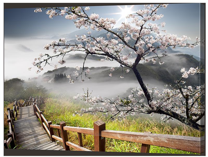 Картина Interno Холст Лестница и сакура 80х62см (R2002М)