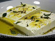Тофу соевый сыр с базиликом