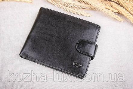 Портмоне мужское кожаное стандарт Braun Buffel 1_617, натуральная кожа, фото 2