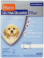 Hartz Дезодорировнный ошейник для щенков от блох и клещей, срок действия - 7 мес, размер - 38 см.