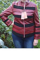 Курточка осенняя из качественного кожзама 44-46 бордо, фото 1