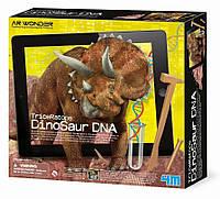"""Набор раскопки ДНК динозавра """"Трицератопс"""" 4M (00-07003)"""