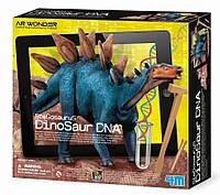 """Набор раскопки ДНК динозавра """"Стегозавр"""" 4M (00-07004), фото 1"""