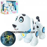 Собака 696-25  20 см, ездит, муз, звук, свет, на батарейке, в кор-ке, 25,5-19-13 см
