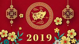 Готовимся к Новому 2019 году – году Жёлтой земляной свиньи