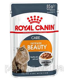 Консервы Royal Canin Intense Beauty в соусе для кошек, 85 г