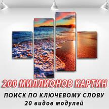 Купить картину модульные, на Холсте син., 65x80 см, (25x18-2/55х18-2), фото 2