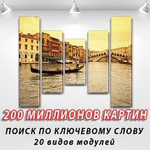 Картина из фотографии модульные на холсте дешево в интернет магазине, 80x100 см, (80x18-2/55х18-2/40x18), фото 2