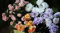 Цветы с доставкой Днепропетровск