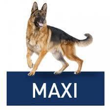 Корма для больших пород (Maxi)