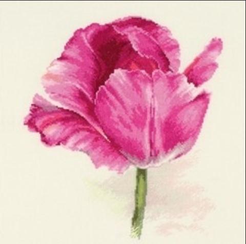 Набір для вишивки хрестом Аліса 2-43 «Тюльпани. Малинове сяйво»