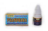 Прандхара. Prandhara. 3 мл. Простуда. Пасморк. Грипп. Головная боль. Зубная боль, тошнота, рвота, фото 2