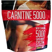 Power Pro Carnitine 5000 карнитин 500 гр.