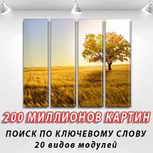 Картины на холсте модульные купить в интернет магазине картин, 65x80 см, (65x18-4), фото 2