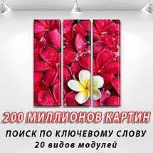 Модульная  картина Экзотические цветы фото на Холсте син., 65x65 см, (65x20-3), фото 2