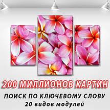 Модульная триптих картина Розовые цветы, на ПВХ ткани, 45х70 см, (30x20-2/45x25), фото 2