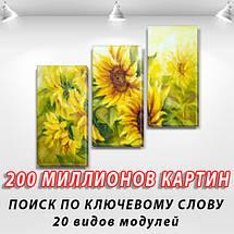 Модульные триптих картины, на ПВХ ткани, 70x80 см, (50x25-2/50х25), фото 2