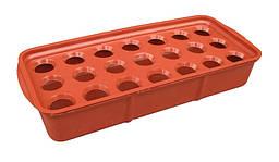 """Луковичница пластиковая (37×16×6 см, 2.2 литра). Лоток для выращивания лука """"ЧП КВВ"""" + Видео"""