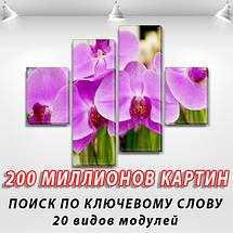 Модульная картина Фиолетовые орхидеи  на ПВХ ткани, 85x110 см, (35x25-2/75х25-2), фото 2