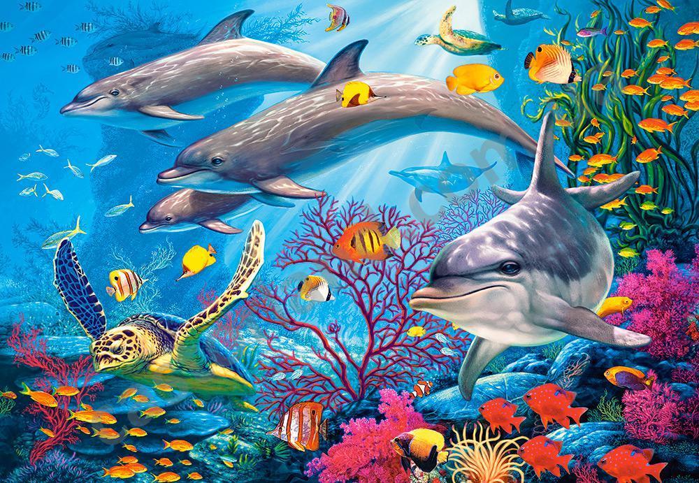 картинка с морскими обитателями чтобы ваш новый