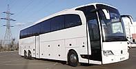 Аренда автобуса на 50 мест