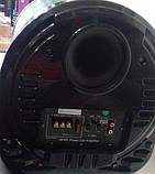 """Автомобільний Сабвуфер 10"""" AiLiang AL-1000A з підсилювачем (800 Вт), фото 5"""