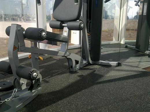 Покрытие для тренировочных залов серии Eco Sport