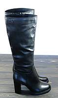 Зимние кожаные сапоги на каблуке черные Anna Lucci