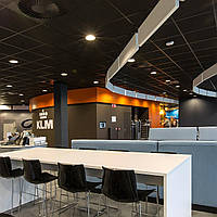 Плита подвесного потолка Rockfon Industrial Black 600х600х25 мм