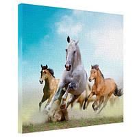"""Картина на холсте """"Лошади"""" 65х65см"""