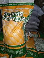 Семена кукурузы Даниил ФАО 280, фото 1