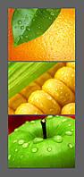 Картина на стекле коллаж Яблоко, кукуруза, апельсин 120*50 см