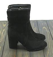 Высокие замшевые ботинки на каблуке Anna Lucci, фото 1