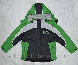 Куртка зимняя для мальчика Енот зеленый (QuadriFoglio, Польша)