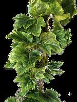 Лиана искусственная виноградная  крупный лист  в пачке 14 метров