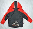 Куртка зимняя для мальчика Енот красная  (QuadriFoglio, Польша), фото 7