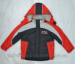 Куртка зимняя для мальчика Енот красная  (QuadriFoglio, Польша)