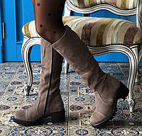 Сапоги женские зимние замшевые на каблуке Marcella, фото 1