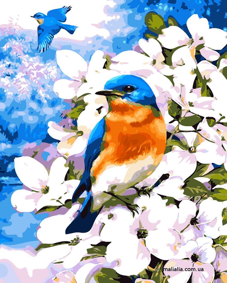 Картины по номерам 40*50 см В КОРОБКЕ Птица в цветах Artstory