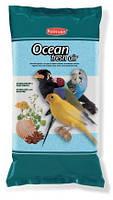 PADOVAN Ocean fresh air - Гигиенический кварцевый наполнитель для птиц с измельченными ракушками 5 кг