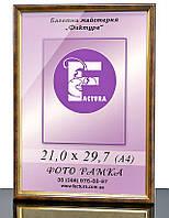 Фоторамка пластиковая, рамка для фото, дипломов, сертификатов, грамот, формата, фото 1