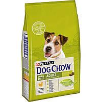 Dog Chow Сухой корм для взрослых собак мелких пород, с курицей, 7,5 кг