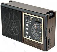 Портативный радиоприемник Golon RX-9922UAR с USB, FM радио на батарейках, с доставкой по Украине