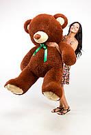 Большая плюшевая игрушка медведь Томми 200 см шоколадный