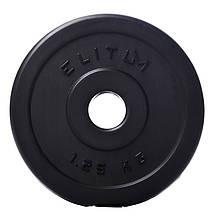 Гантеля композитная Elitum 11 кг, фото 3