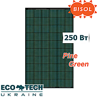 Солнечная батарея BISOL Spectrum Pine Green 250 Wp поликристалл, цвет Зеленая Сосна