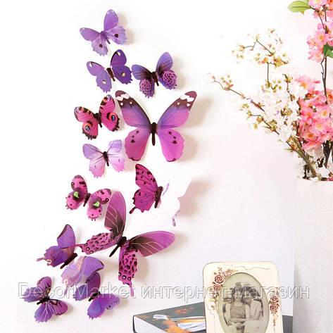 Набор бабочек 3D на скотче, ФИОЛЕТОВЫЕ цветные, фото 2