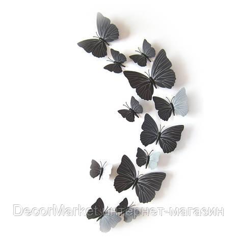Набор бабочек 3D на магните, ЧЕРНЫЕ цветные, фото 2