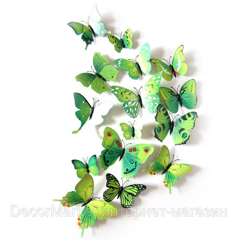 Набор бабочек 3D на магните, ЗЕЛЕНЫЕ цветные